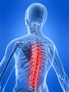 The 1st International Congress on Spinal Pain