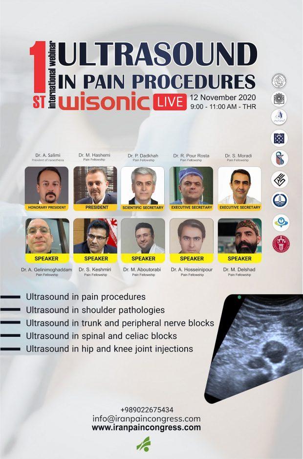 Webinar of Ultrasound in Pain Procedures